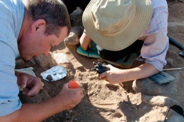 Archaeologists dig at the Shubayqa site in Jordan, the latest example of the Natufian Culture, the last hunter-gatherers of the Near East. Photo by the University of Copenhagen
