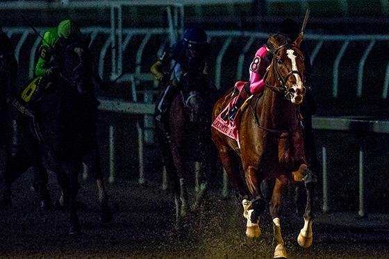 War of Will, seen winning the Lecomte Stakes in his last start, is the favorite for Saturday's Grade II Risen Star at Fair Grounds in New Orleans, a key stop on the Road to the Kentucky Derby. Fair Grounds photo
