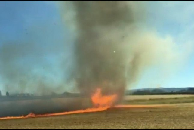 Yep, a firenado is pretty much exactly what it sounds like. Screenshot: Storyful