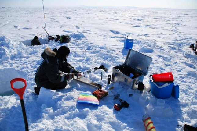 Scientists measured how light levels and temperature changes impact algae growth on the underside of Arctic sea ice. Photo by Kasper Hancke/Aarhus University