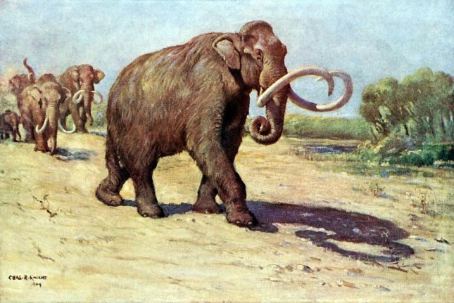 Climate change was the primary driver of the disappearance of North American mammoths, according to a new study. Photo by Charles R. Knight/Wikimedia Commons