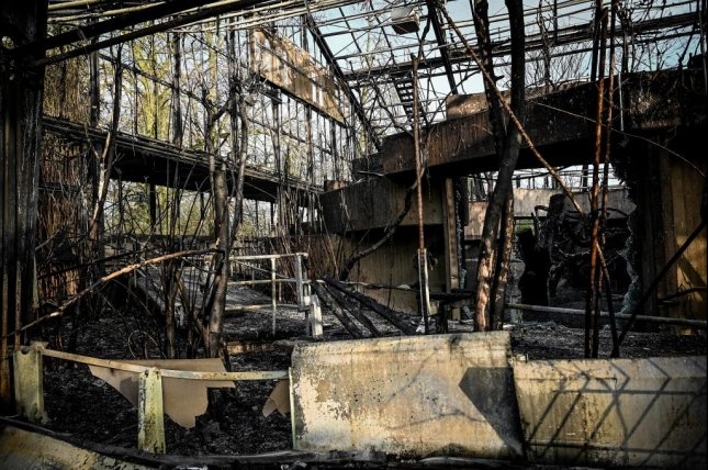 More than 30 animals, including rare apes and monkeys, were killed in a fire at a zoo in Krefeld, Germany, during the early morning hours of Jan. 1, 2020. Photo by Ascha Steinbach / EPA-EFE