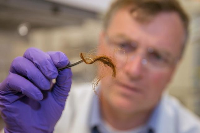 Glendon Parker, a biochemist at Lawrence Livermore National Laboratory's Forensic Science Center, studies a 250-year-old hair sample. Photo by Julie Russell/LLNL