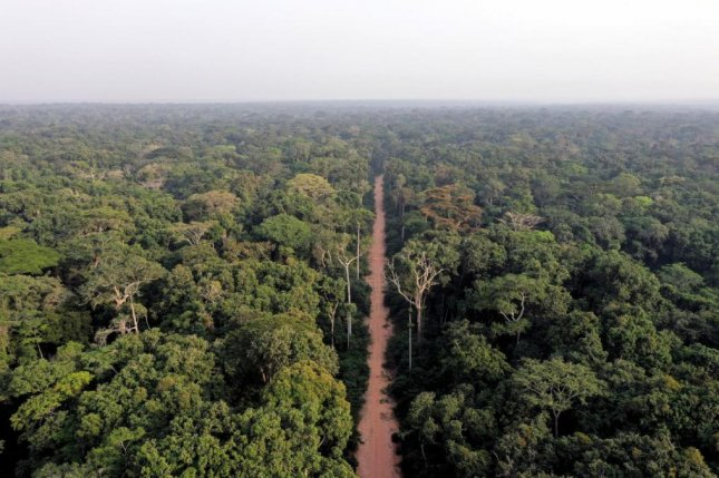 A road bisects a thick expanse of forest in the northern Congo, an area of rainforest that researchers say needs more attention if it is to survive both climate change and development. Photo by IRD/Nicolas Barbier
