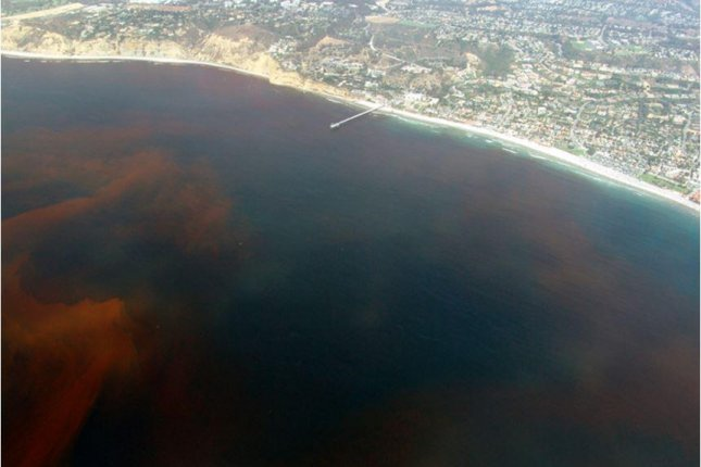 Red tide appears off the Scripps Pier in La Jolla, Calif. Photo by P. Alejandro Díaz and Ginny Velasquez/Wikimedia Commons