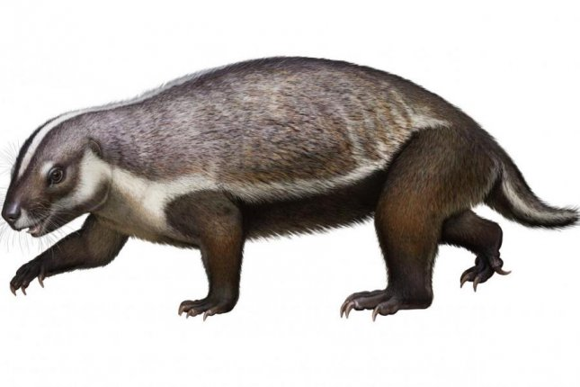 The 66-million-year-old mammal species Adalatherium featured a strange combination of anatomical features. Illustration courtesy of Andrey Atuchin