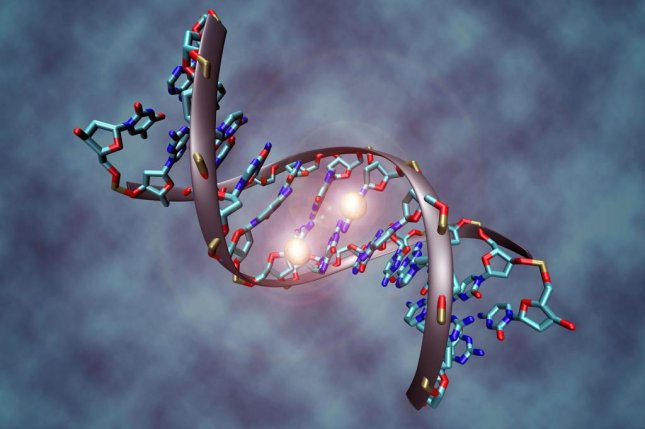 The chemical process known as DNA methylation, pictured here, helps silence jumping genes and other invasive DNA sequences. Photo by Christoph Bock/Max Planck Institute for Informatics