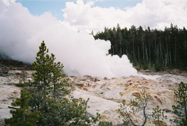Steamboat geyser in Yellowstone National Park, the world's tallest active geyser, pictured venting steam one day after its May 23, 2005 eruption -- it's last eruption before July 31, 2013. (CC/Mongo)