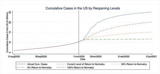 The chart shows forecasted cases through the end of January. Photo courtesy of Washington University in St. Louis