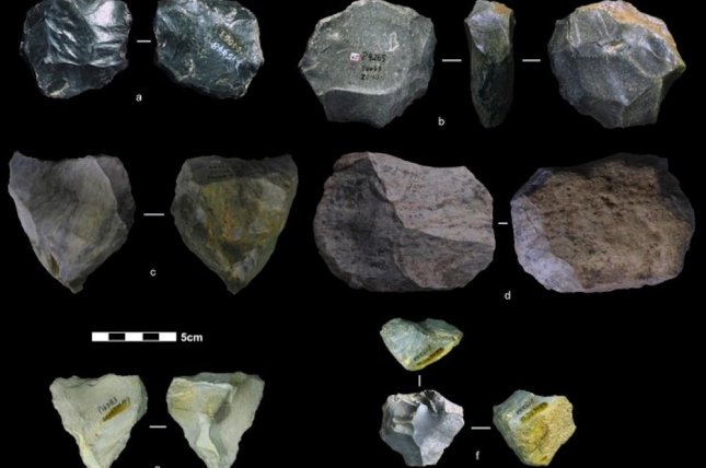 Levallois cores are known as the Swiss Army knife of prehistoric tools because of their versatility. The faceted stone core could be used to spear, slice, scrape or dig. Photo by the University of Washington/Marwick et al./Nature