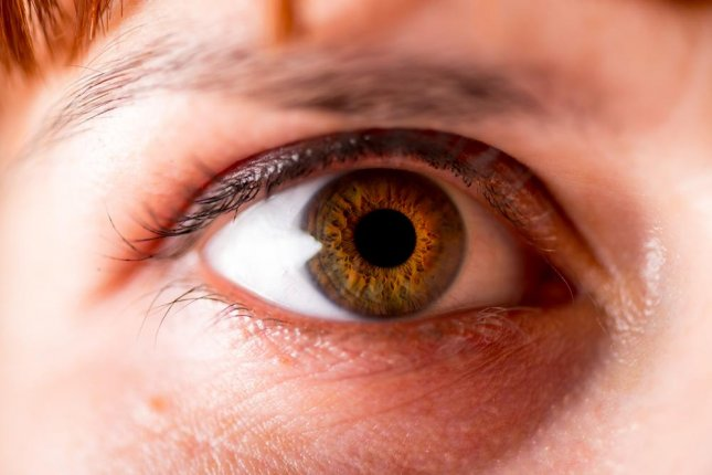 Researchers said the treatment may be useful for other diseases related to the mitochondria in the eye. Photo by Liukov/shutterstock