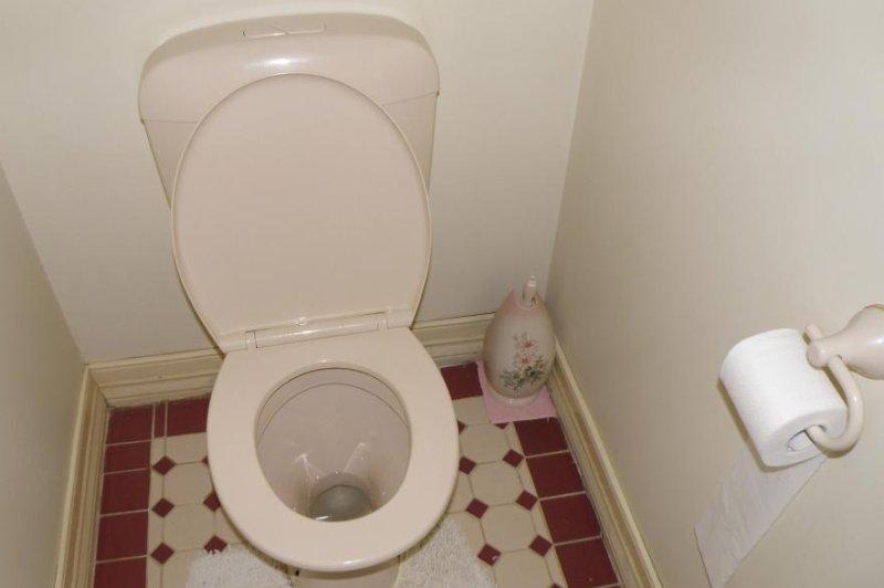 A toilet (CC/Matthew Paul Argall)