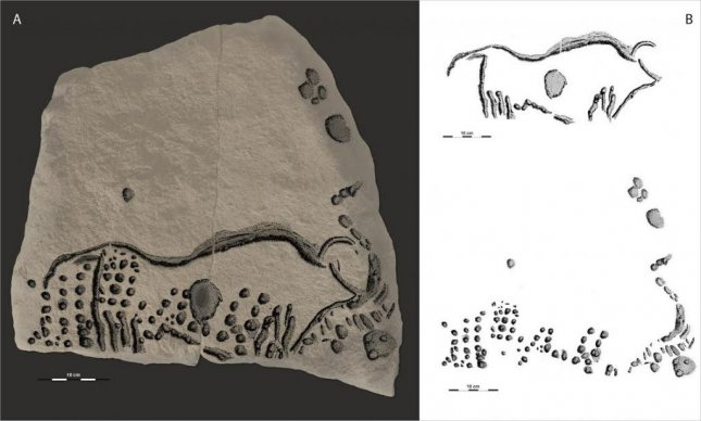 Scientists in France have discovered ancient pointillist engravings representing both a wild cow and a wooly mammoth. The engravings were made more than 35,000 years ago. Photo by R. Bourrillon