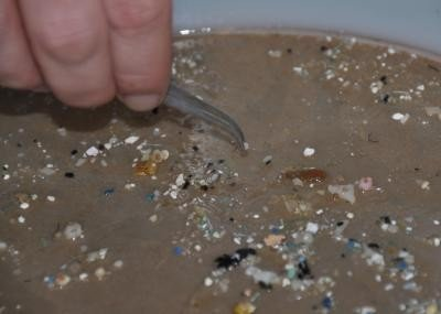 Pieces of plastic debris found in the oceans are smaller than many people think. Most are measured in millimeters. Credit: Sea Education Association