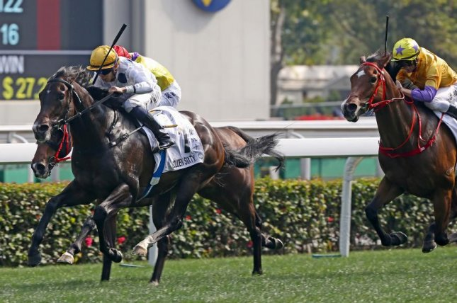 Golden Sixty wins Sunday's Hong Kong Classic Cup at Sha Tin Racecourse and now is set for the Hong Kong Derby. Photo courtesy of Hong Kong Jockey Club