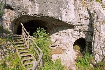 View of the cave in Siberia where the Neanderthal was found whose DNA was analyzed in the current study. (Credit:Bence Viola)