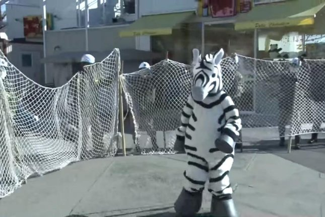 Tokyo zookeepers chase woman in zebra costume for escape drill