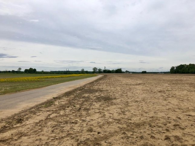 An Indiana corn field sits unplanted this spring. Historically high rains and flooding prevented farmers across the Midwest from planting this year, and insurance claims are beginning to pour in. Photo by Jessie Higgins/UPI