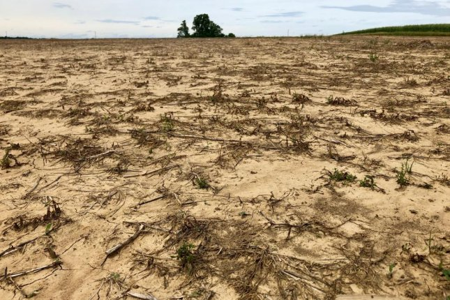 A cornfield in Indiana remained bare Thursday. As of Sunday, only 3 percent of the fields were planted in Indiana, putting the state far behind the average of 35 percent. Photo by Jessie Higgins/UPI