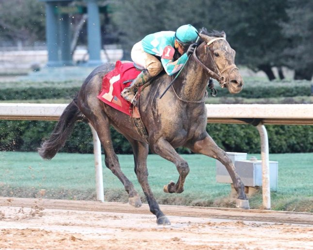 My Boy Jack, seen winning the Southwest Stakes Feb. 19 at Oaklawn Park, is now in the Kentucky Derby picture but needs qualifying points to get into the field. (Oaklawn photo)