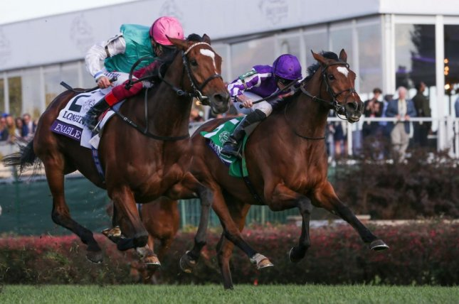 Enable, seen winning the 2018 Breeders' Cup Turf, came up just short of winning the Prix de l'Arc de Triomphe for the third straight year Sunday, and her connections said her presumed retirement will get further consideration. Photo courtesy of Breeders' Cup