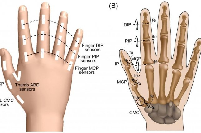 Several references to the Creator in a PLOS ONE paper on the biomechanics of the human hand implied that the hand's versatility was the work of a supreme being and not the result of evolution. Photo by PLOS ONE/Huazhong University of Science and Technology