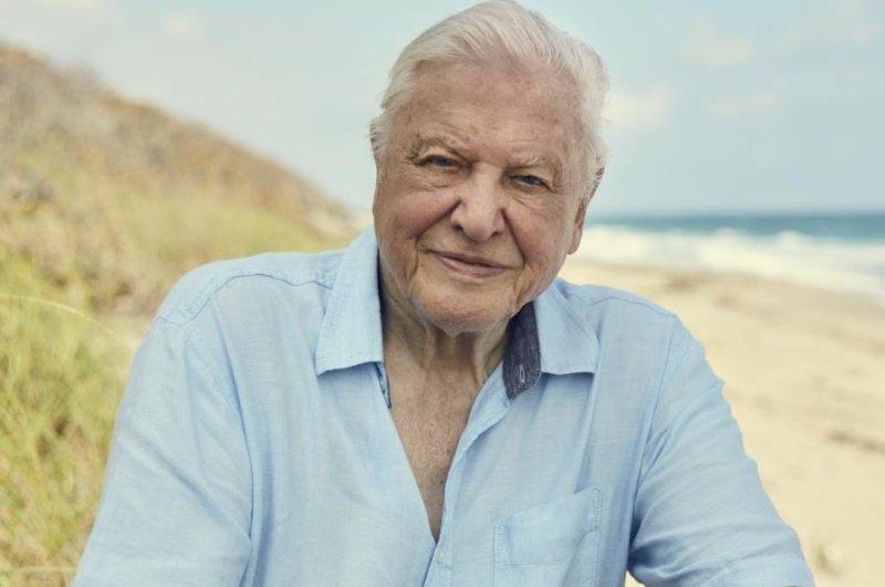 David Attenborough's new nature program Dynasties is to premiere on Saturday. Photo courtesy of BBC America