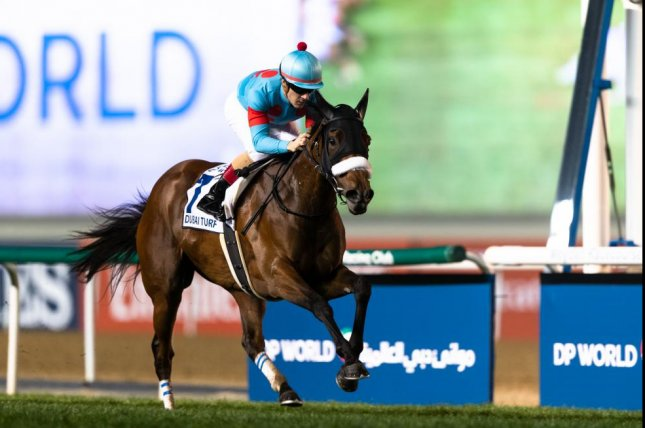 Japan's star filly, Almond Eye, sweeps to victory in the Group 1 Dubai Turf on Dubai World Cup night at Meydan Racecourse. Photo by Neville Hopwood / Dubai Racing Club