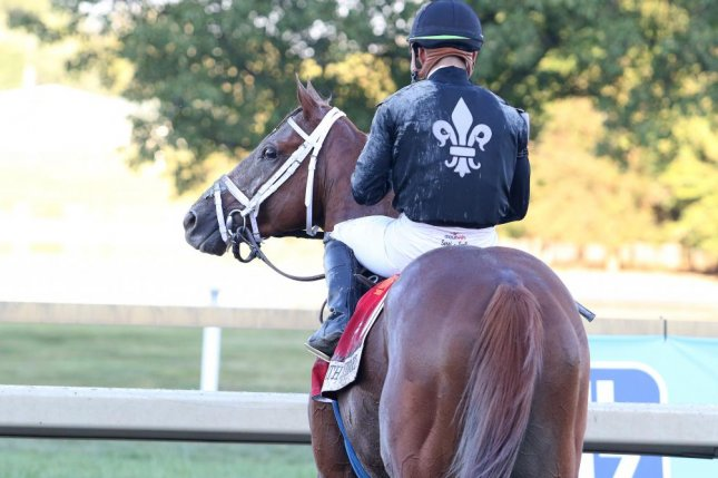 Max Wizard looks back over his shoulder after upsetting in Saturday's $1 million Pennsylvania Derby. Photo by Bill Denver/Equiphoto, courtesy of Parx Racing