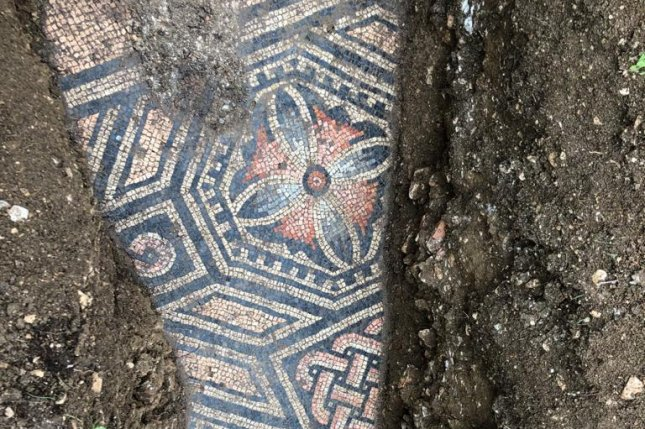 Archaeologists uncovered an Ancient Roman mosaic floor dating the 3rd century A.D. beneath a row of vines in northern Italy. Photo by Comune di Negrar di Valpolicella/Facebook