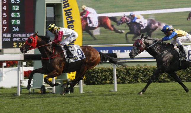 Supreme Profit, a classic Horatio Alger type, wins Sunday's Centenery Vase at Sha Tin in Hong Kong. (HKJC photo)