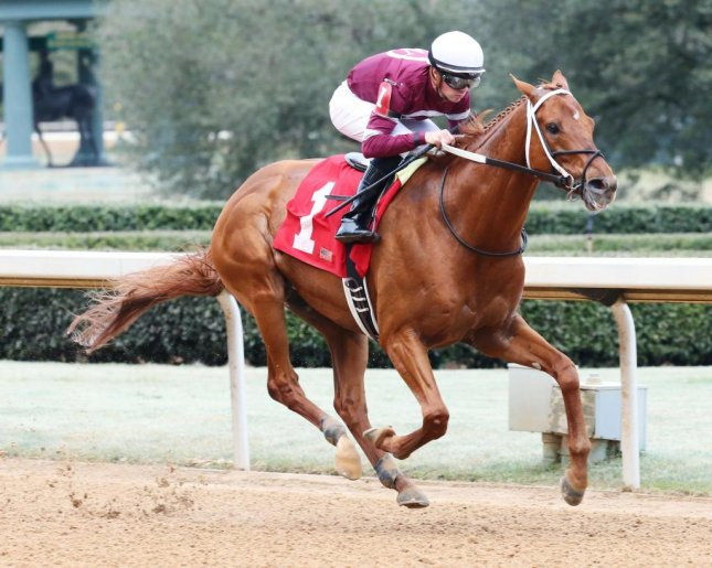 Gun Runner (seen winning the Razorback Handicap at Oaklawn Park) is the big favorite for this weekend's Grade I Woodward at Saratoga. (Oaklawn photo)