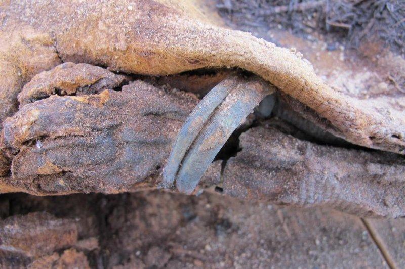 More than a million mummies found in ancient Roman cemetery