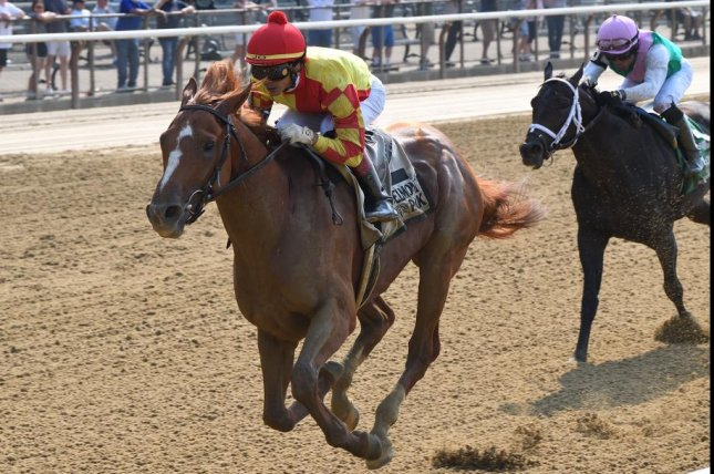 First Captain wins Monday's Dwyer Stakes at Belmont Park, opening the door to the Jim Dandy and Travers at Saratoga. Photo by Chelsea Durand, courtesy of New York Racing Association