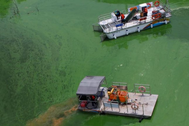 An aerial photo showing workers releasing watery yellow dirt and coagulants into the Nakdong River in Daegu, to prevent green algae blooms from spreading in 2015. A blue-green algae warning was issued Tuesday. File Photo by Yonhap/EPA