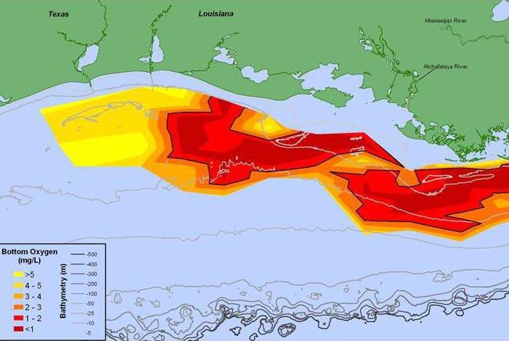 The Gulf's 2015 dead zone. Photo by NOAA