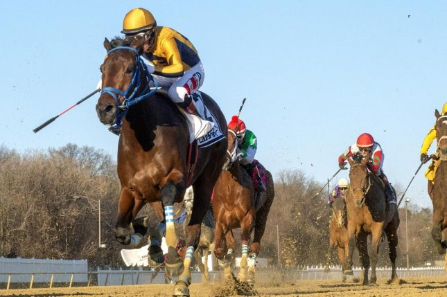 Late Night Pow Wow, seen winning the Grade III Barbara Fritchie at Laurel Park in her last start, puts a long winning streak on the line in Saturday's Grade I Madison at Keeneland. Photo courtesy of Laurel Park