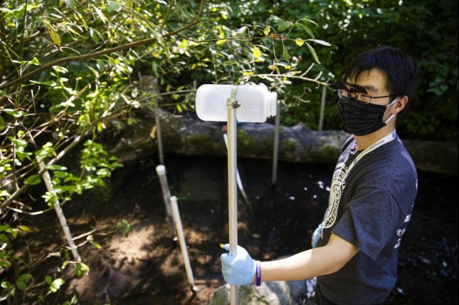 Researcher Zhenyu Tian holds a sampling pole used to collect creek water from streams where migrating coho salmon sometimes turn up dead after heavy rains. Photo by Mark Stone/University of Washington