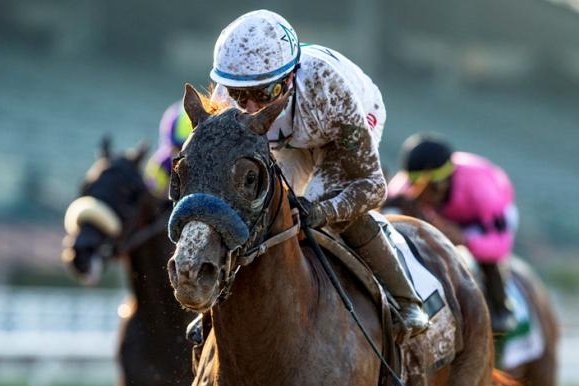 Improbable upsets Maximum Security in Saturday's Awesome Again at Santa Anita. Photo courtesy of Santa Anita