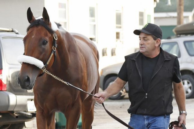 U.S. Triple Crown winner American Pharoah, led by assistant trainer Jimmy Barnes, leaves the Churchill Downs backstretch Thursday, headed back to California. (Churchill Downs photo)