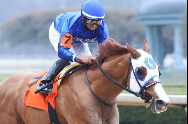 Mystic Guide, shown winning the Razorback Handicap at Oaklawn Park, is favored for Saturday's $12 million Dubai World Cup. Photo by Coady Photography, courtesy of Oaklawn Park