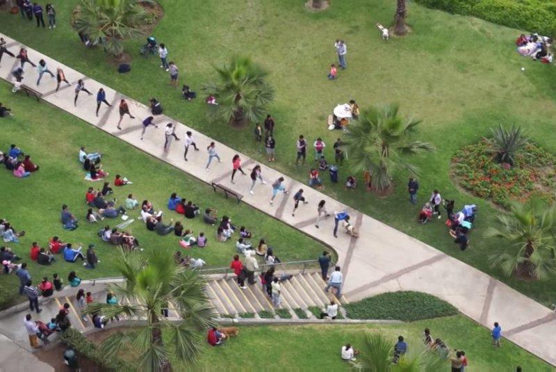A skateboarding bulldog rides through 30 sets of legs to set a Guinness World Record in Lima, Peru. Newsflare video screenshot