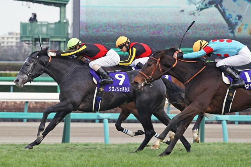Chrono Genesis wins Sunday's Grade 1 Arima Kinen at Nakayama Racecourse. Photo courtesy of Japan Racing Association
