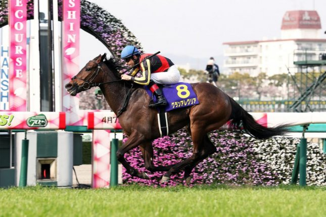 Gran Alegria, seen winning the Grade 1 Oka Sho, or Japanese 1000 Guineas, is among the favorites in Sunday's Grade 1 NHK Mile Cup at Tokyo Racecourse. Photo courtesy of Japan Racing Association