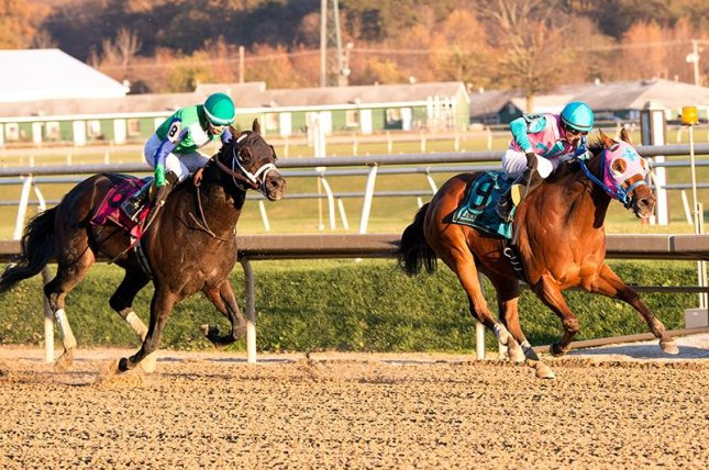 Gentlemen's Bet (No. 8) finishing second in Saturday's (11/14) De Francis Dash at Laurel, was elevated to the win after an inquiry. (Laurel photo)