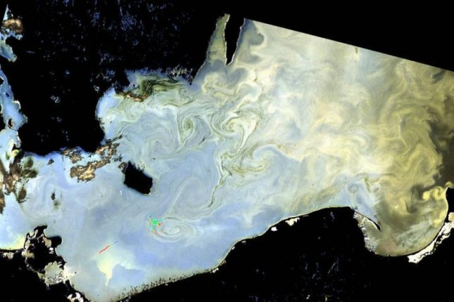 Researchers say that rising seafood demand and coastal development may be linked to an increase in more harmful algal blooms, such as the one pictured in the Baltic Sea. Photo by European Space Agency