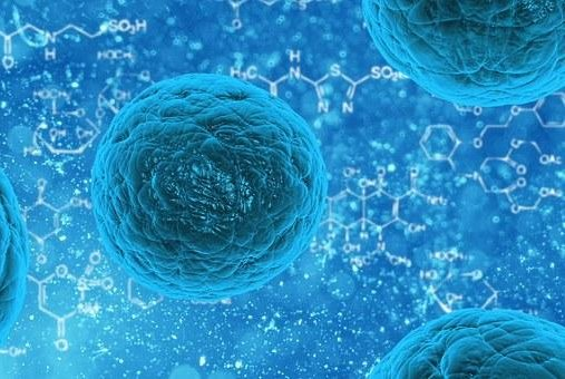 US FDA steps up scrutiny of stem cell therapies