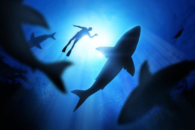 Ominous music used in films and documentaries about sharks may reduce people's willingness to participate in shark conservation efforts, a recent study at the University of California San Diego suggests. Photo by solarseven/Shutterstock