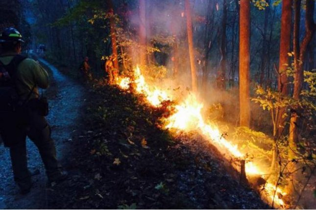 A firefighter sent from California watches as a fire consumes part of a forest in North Carolina amid a regional wildfire crisis in the southeast. One person died in a Kentucky road due to poor visibility from smoke. Photo courtesy of U.S. Forest Service-Pacific Southwest Region