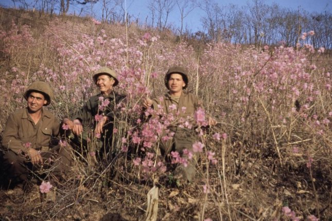 Gilberto Diaz Velasco and fellow Colombian soldiers pose in a field of wildflowers in the spring of 1953. A new online exhibition displays over 150 photos taken by Diaz over 14 months during the Korean War. Photo courtesy of Gilberto Diaz Velasco